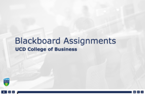 Blackboard Assignments